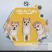 [Rezz Room] Box Shiba Inu Puppy Animesh (Companion)
