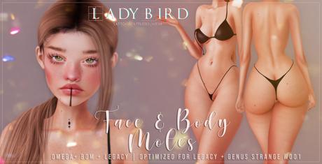 Ladybird. // Body & Face Moles