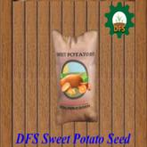 DFS Sweet Potato Seed