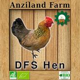 DFS Hen