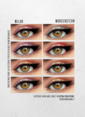 MORGENSTERN: MILAN EYESHADOW [LELUTKA EVOLUTION]