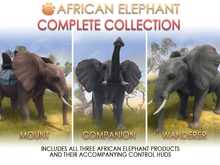 JIAN African Elephant FATPACK Unpacker HUD