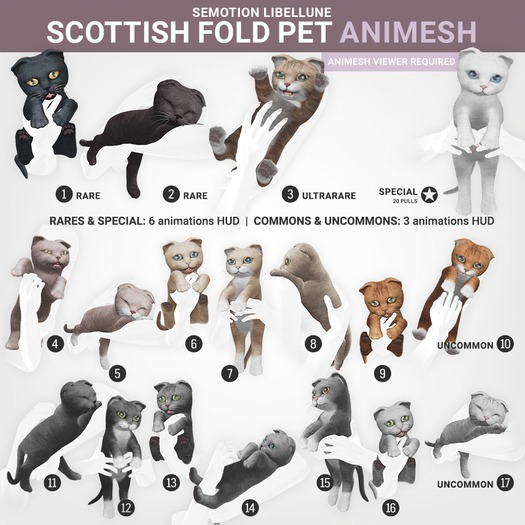 SEmotion Libellune Scottish Fold Pet Animesh #17 UNCOMMON