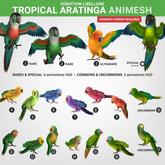 SEmotion Libellune Tropical Aratinga Animesh #10 UNCOMMON