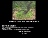 Green Snake In Tree With Moving Tongue