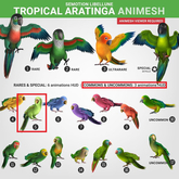 SEmotion Libellune Tropical Aratinga Animesh #5