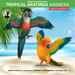 Tropical aratinga 0720 ad