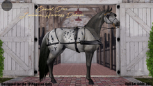 Cheval D'or / TeeglePet Pegasus / Luciana Harness. (Boxed)