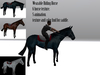 Wearable riding animesh horse