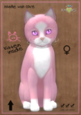KittyCatS Box - Chateau Cat - Pink & White No. 1 - Gerbera Purple