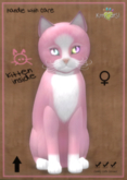 KittyCatS Box - Chateau Cat - Pink & White No. 1 - Double Odyssey Love