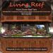 Inochi Reef : Room Divider Reef Tank (4.4x1.9x3.4)