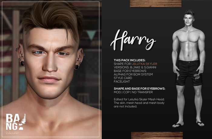#BANG . Shape for Lelutka Skyler . Harry *Wear*