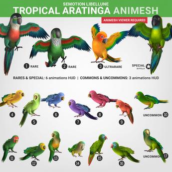 SEmotion Libellune Tropical Aratinga Animesh #15