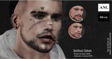 AM. - David Facial hair // Eyebrows