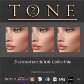 TONE 2 - Destination Blush Collection (wear to open)