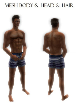 Complete Male mesh body men avatar & bento head & hair almost free limited time offer!!