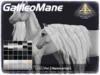 ABADDON ARTS - Galileo Mane LUXE [Teeglepet Hanoverian]