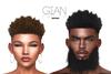 Unorthodox- Gian Hair