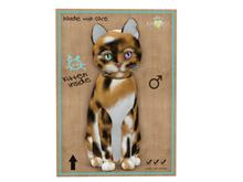 KittyCatS Box - 8 T - M - Maine Coon - Plush Calico