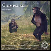 Jinx : Chimpanzee Bento Avatar