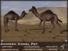 FaceDesk - Animesh Camel Pet - Roaming, Autonomous, lifelike