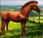 ** ABC PET **  Irish Sport Horse Show Horse - No Feeding, Just ride!