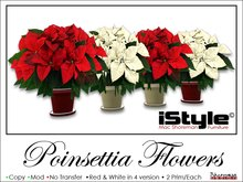 iStyle Potted Red&White Poinsettia