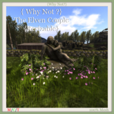 { Why Not ?}The Elven Couple{Resizable}-Boxed