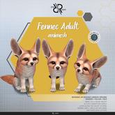 [Rezz Room] Box Fennec Adult Animesh (Companion)