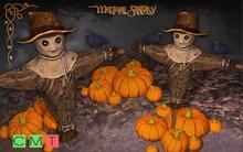 [MF] Halloween scarecrow pumpkins decor (boxed)