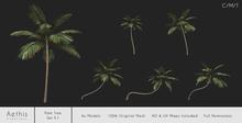 [AC] Palm Tree Set V.1 (Full Permissions) - 6x Models