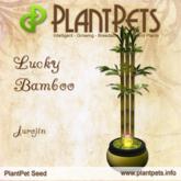 PlantPet Seed [Lucky Bamboo *Jurojin*]