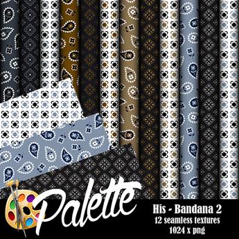 Palette - His Bandana 2