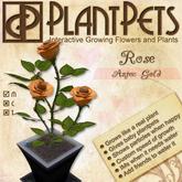PlantPet Seed [Rose *Aztec Gold*]