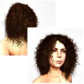 VC - Hair Chestnut curly
