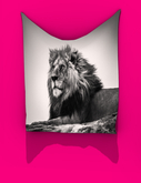 PASSION ARTS GALLERY - The Lion