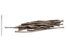 Nutmeg. Garden Junk Brushwood