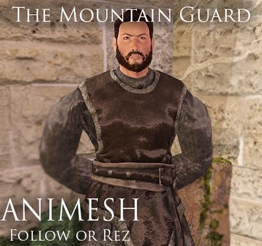 Jewel: Animesh The Mountain Guard (Follow / Rez)
