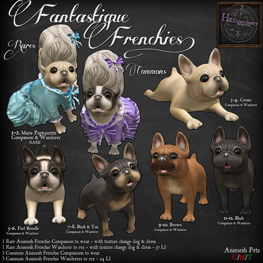 5. *HEXtraordinary* Pied Brindle Frenchie Companion