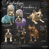 5. *HEXtraordinary* Pied Brindle Frenchie Companion
