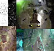 -Elemental- 'The Void' Aura System Hud