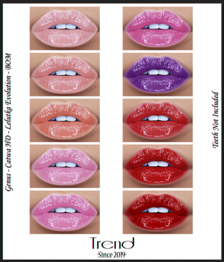 TREND - Coral Lip Gloss - Fatpack