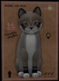 KittyCatS Box - Fur: Foxie - Dusty Slate Eyes: Genesis Bronze (Shape: Curious | Pupil: Big) Shade: Natural Tail: Genesis