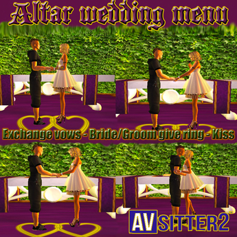 Simple and Economic Wedding Ceremony Menu 4 Animations exchange rings, vows, kiss the essential for weddings AVsitter 2