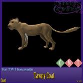 [MC]  Tawny Twi Lion Coat [wear to unpack]