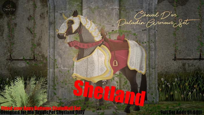 Cheval D'or / TeeglePet Shetland / Paladin Armour Set.