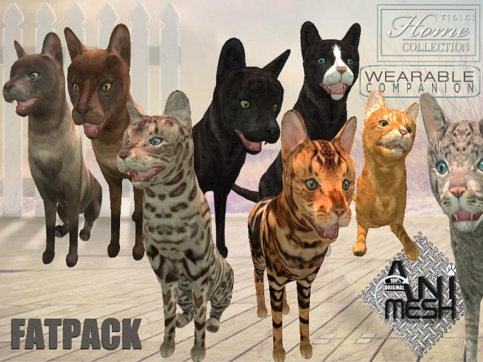 Companion Cats, Fatpack