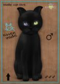 KittyCatS Box - Russian - Black - Odyssey Wonder