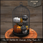 !! Follow US !! GIFT Hello Fall - Fantasy pumpkins in cage BOX